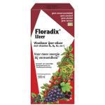 Floradix ijzer elixer Salus 500ml