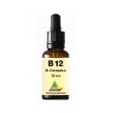 b12 b-complex fluid