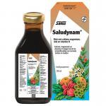 Salus Saludynam 250ml