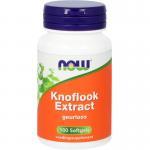 NOW Knoflook extract 100sft