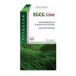Fytostar EGCG Line 120cap