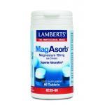 Lamberts MagAsorb 60tab