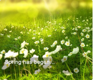 spring has begun - Supplements Europe